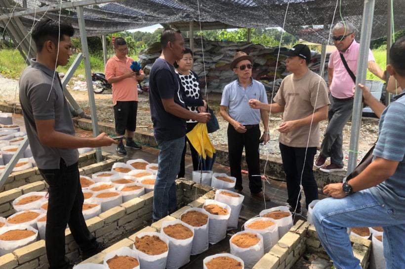 海外農業指導1